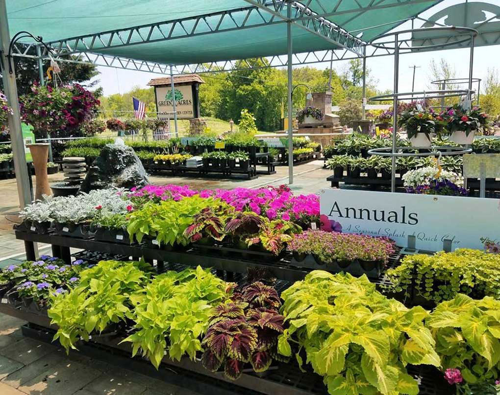 Nursery Garden Center Green Acres