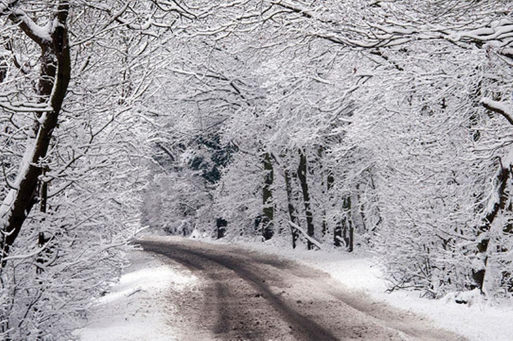 Snow Removal Calcium Chloride Vs. Salt